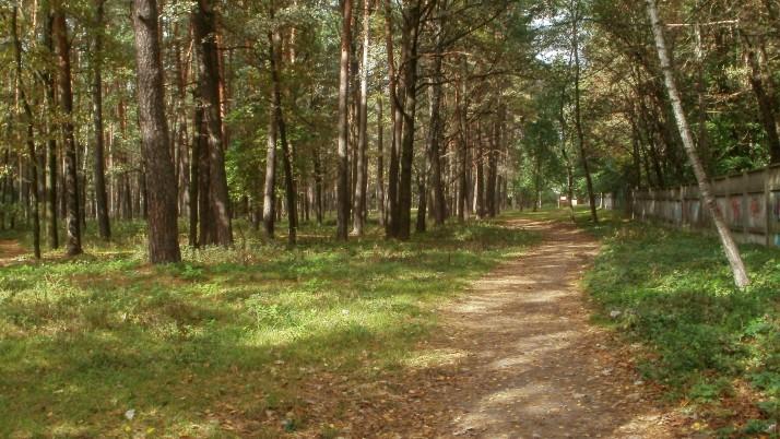 Паркова зона чи «царське село»: на Чернігівщині занепокоєні можливою зміною цільвого призначення земель у Ялівщині